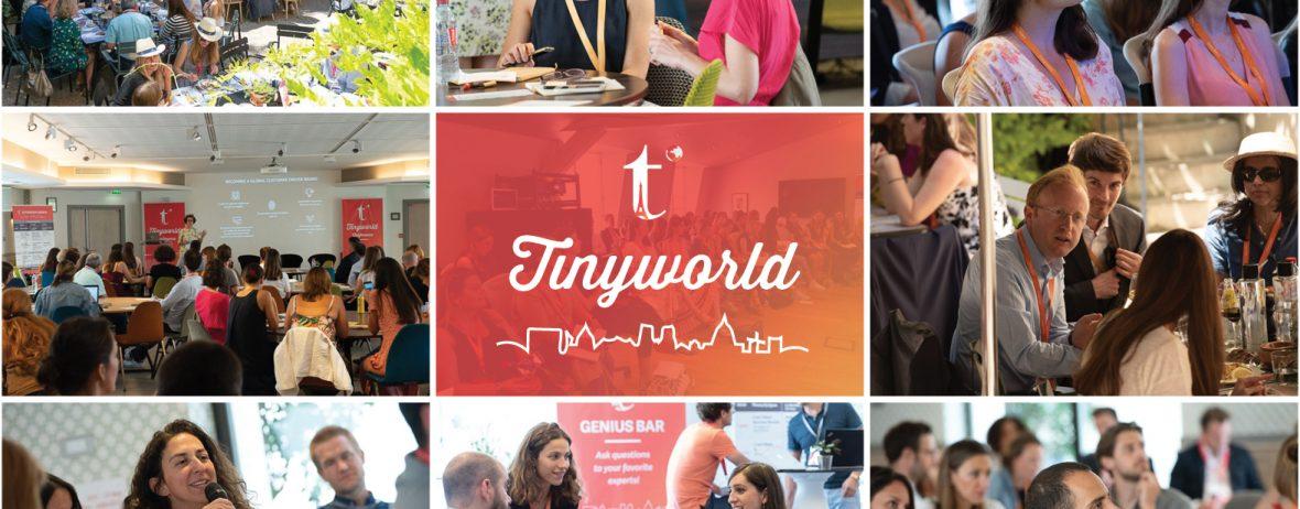 TInyclues Tinyworld
